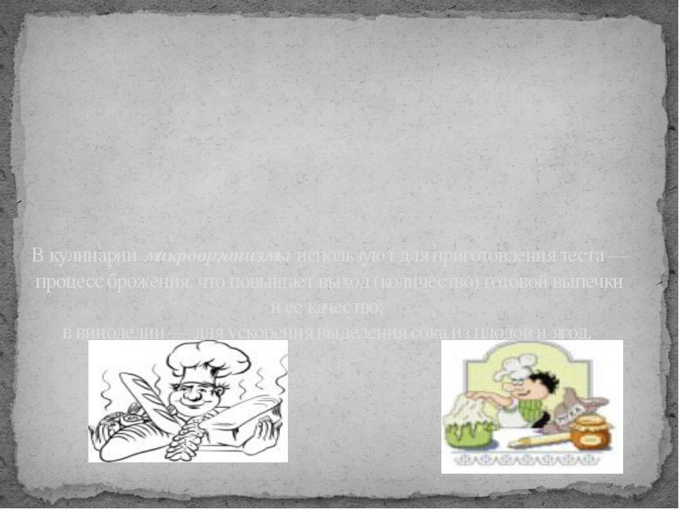 В кулинарии микроорганизмы используют для приготовления теста — процесс броже...