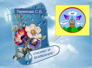 СПАСИБО ЗА ВНИМАНИЕ ! Терехова С.Б.