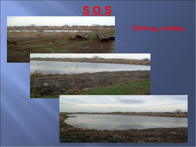 S O S 2010год, ноябрь