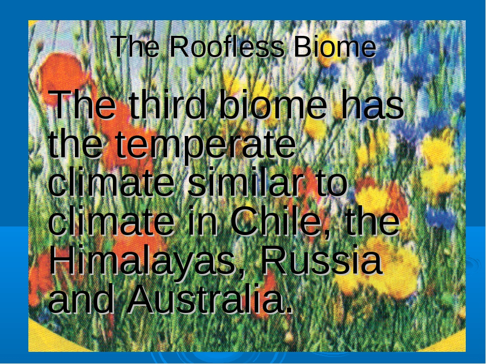 The Roofless Biome The third biome has the temperate climate similar to clima...