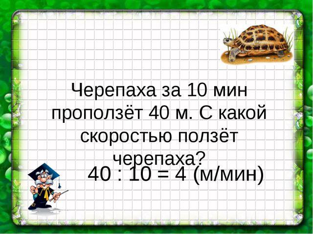 Черепаха за 10 мин проползёт 40 м. С какой скоростью ползёт черепаха? 40 : 10...