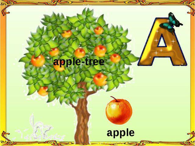 apple apple-tree
