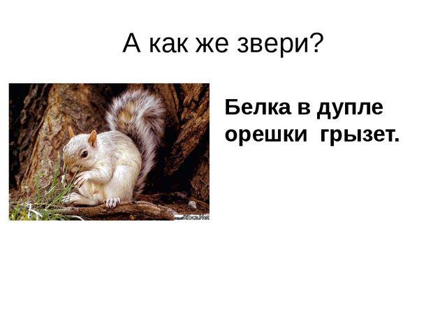 А как же звери? Белка в дупле орешки грызет.