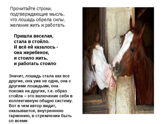 Прочитайте строки, подтверждающие мысль, что лошадь обрела силы, желание жить...