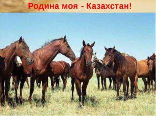 Родина моя - Казахстан!  Там лазурное небо и снежные горы, Бескрайних по