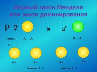 Первый закон Менделя или закон доминирования × ♀ ♂ гаметы А А а а F 1 А , А а