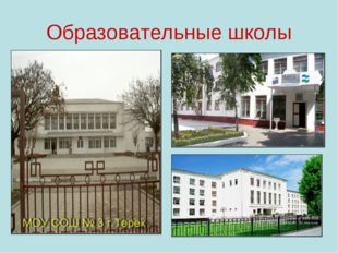 Образовательные школы