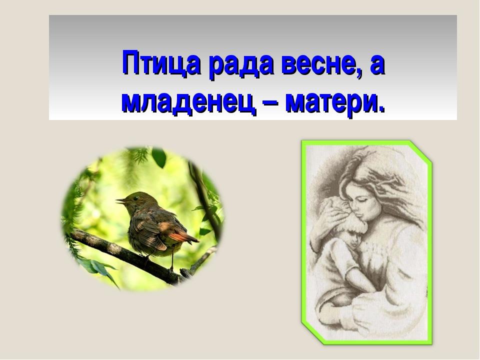 Птица рада весне, а младенец – матери.