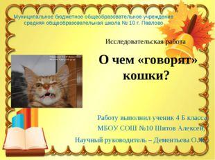 Работу выполнил ученик 4 Б класса МБОУ СОШ №10 Шитов Алексей, Научный руковод