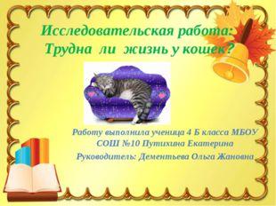 Исследовательская работа: Трудна ли жизнь у кошек? Работу выполнила ученица 4