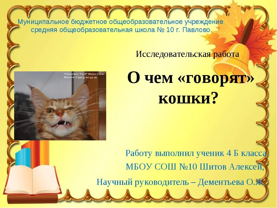 Работу выполнил ученик 4 Б класса МБОУ СОШ №10 Шитов Алексей, Научный руковод...