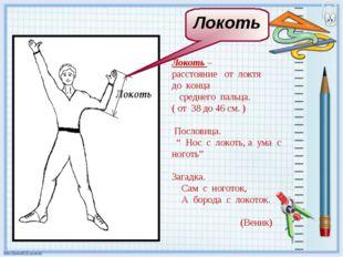 Локоть – расстояние от локтя до конца среднего пальца. ( от 38 до 46 см. ) По