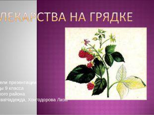 Создатели презентации Ученицы 9 класса Нукутского района БорисоваНадежда, Хон