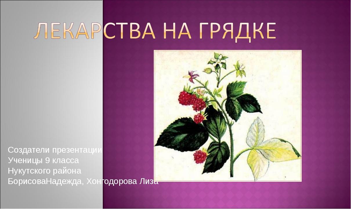 Создатели презентации Ученицы 9 класса Нукутского района БорисоваНадежда, Хон...