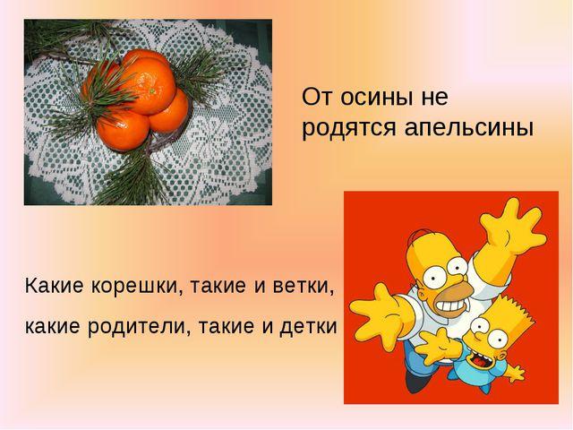 От осины не родятся апельсины Какие корешки, такие и ветки, какие родители, т...