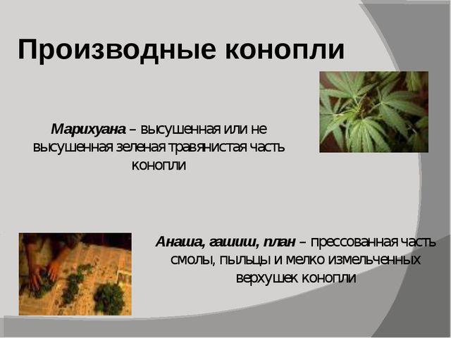 Производные конопли Марихуана – высушенная или не высушенная зеленая травянис...