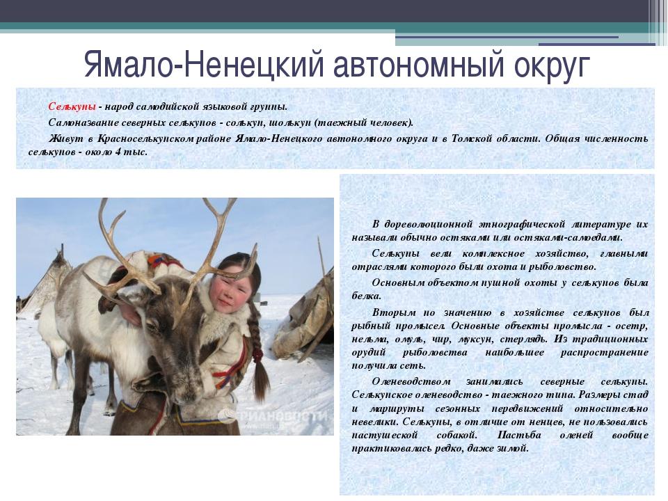 Ямало-Ненецкий автономный округ Селькупы - народ самодийской языковой группы....