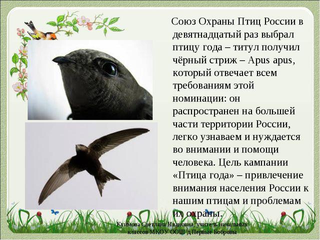 Cоюз Охраны Птиц Россиив девятнадцатый раз выбрал птицу года – титул получи...