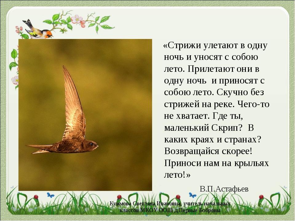 «Стрижи улетают в одну ночь и уносят с собою лето. Прилетают они в одну ночь...