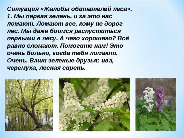 Ситуация «Жалобы обитателей леса». 1. Мы первая зелень, и за это нас ломают....