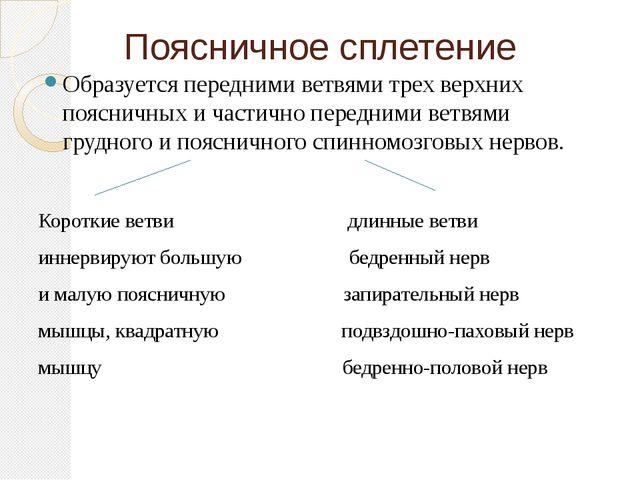 Поясничное сплетение Образуется передними ветвями трех верхних поясничных и ч...