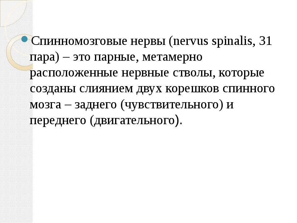 Спинномозговые нервы (nervus spinalis, 31 пара) – это парные, метамерно расп...