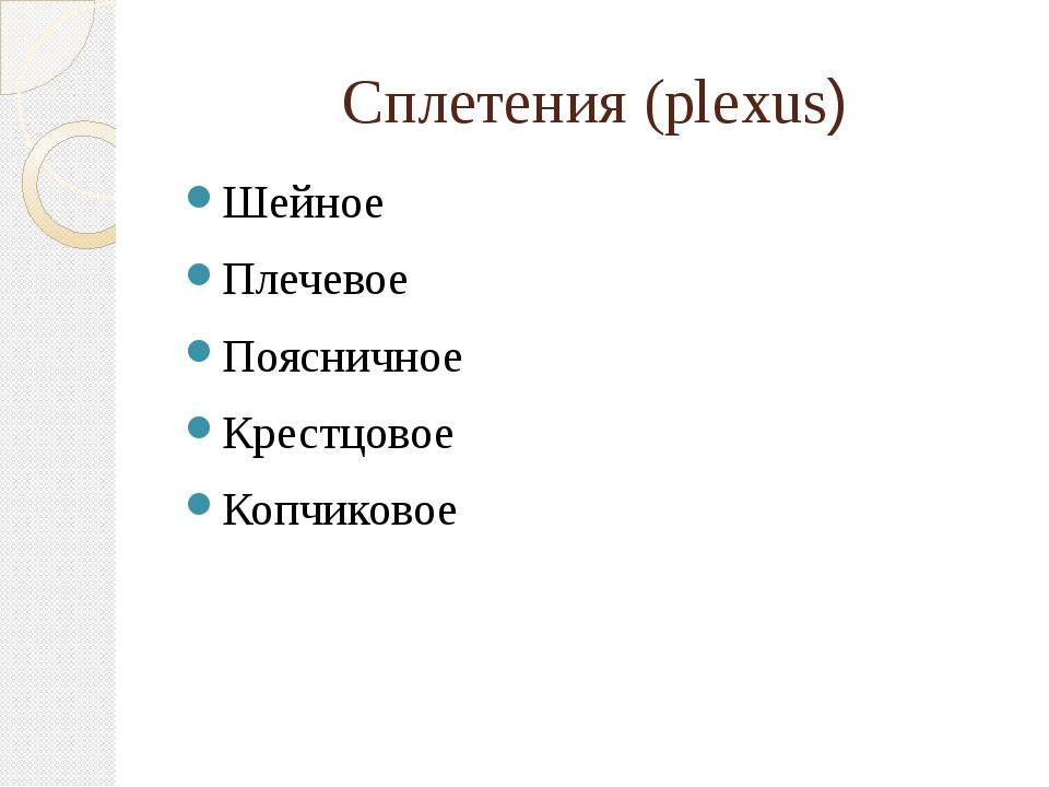Сплетения (plexus) Шейное Плечевое Поясничное Крестцовое Копчиковое