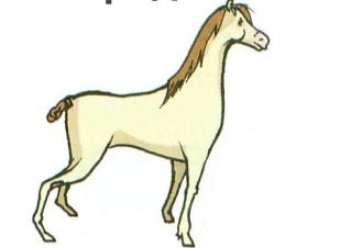 C:\Documents and Settings\учитель\Рабочий стол\шерстнёва с.в\уроки\лошадь.jpg