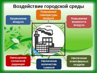 Воздействие городской среды Повышение влажности воздуха Загрязнение воздуха П