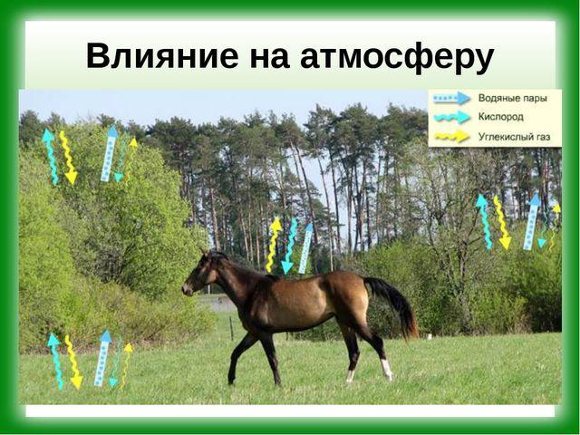 Влияние на атмосферу