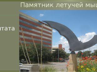 Памятник летучей мыши Остин - столица штата Техас