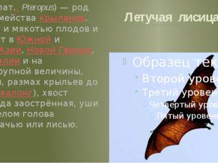 Летучая лисица Летучие лисицы (лат..Pteropus) — род рукокрылых семейства кры