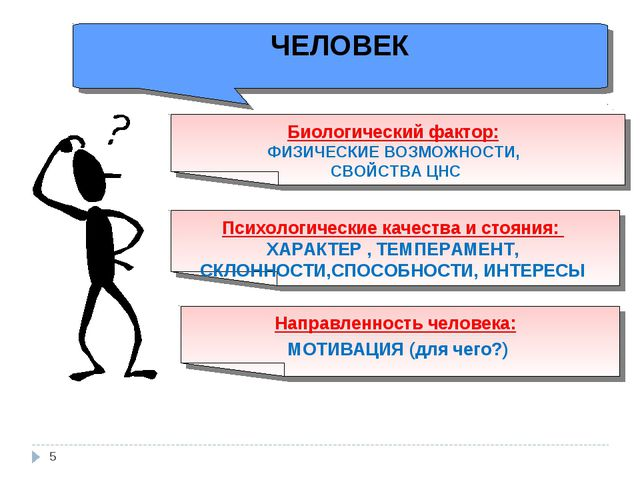 ЧЕЛОВЕК Биологический фактор: ФИЗИЧЕСКИЕ ВОЗМОЖНОСТИ, СВОЙСТВА ЦНС Направленн...