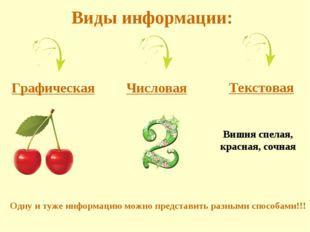 Виды информации: Вишня спелая, красная, сочная Одну и туже информацию можно п