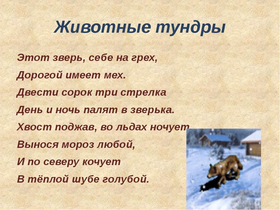Есть на Севере береза, Что стоит среди камней, Побелели от мороза Ветви черны...