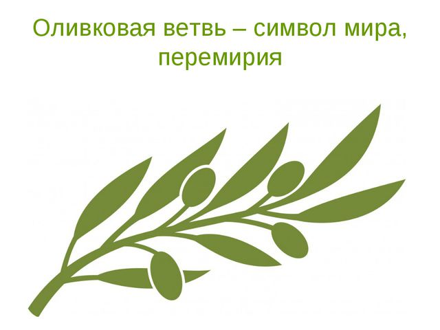 Оливковая ветвь – символ мира, перемирия