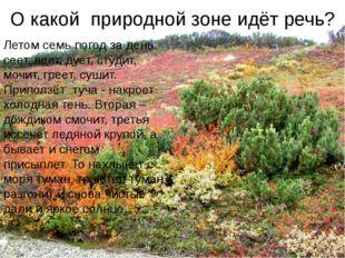 Промыслы северных народов У северных народов нет леса, металла, поэтому для п