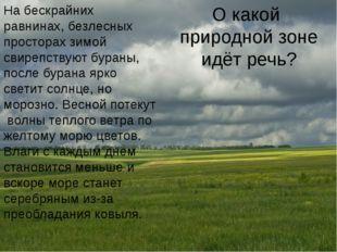 Самые плодородные почвы Самые плодородные почвы – это чернозем, который форми