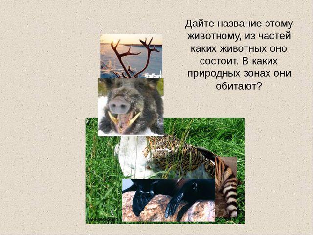 Дайте название этому животному, из частей каких животных оно состоит. В каких...