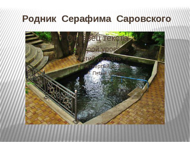 Родник Серафима Саровского