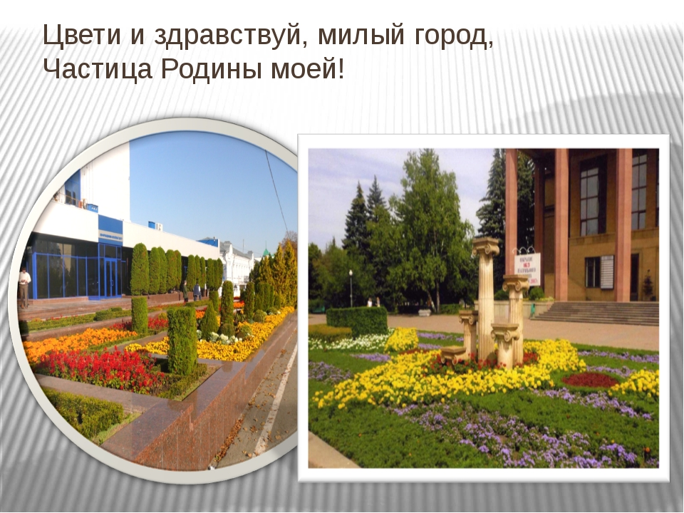 Цвети и здравствуй, милый город, Частица Родины моей!