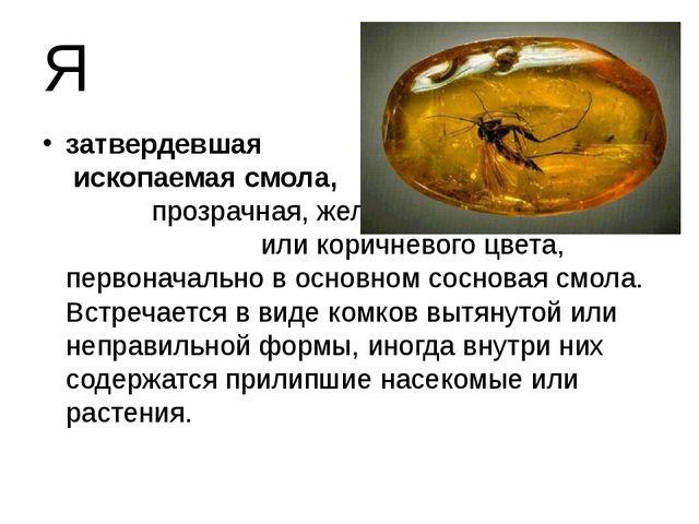 Я затвердевшая ископаемая смола, прозрачная, желтого или коричневого цвета, п...