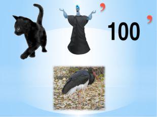 «Подвижность, красивое оперение, разноголосое пение – все это делает птиц укр