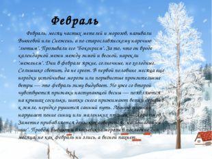 Февраль Февраль, месяц частых метелей и морозов, называли Вьюговой или Снежен