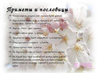 Приметы и пословицы Теплый апрель, мокрый май - значит будет урожай. Апрель в