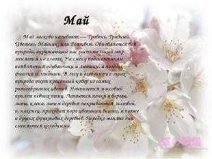 Май Май ласково называют — Травень, Травный, Цветень, Майник, или Розоцвет. О