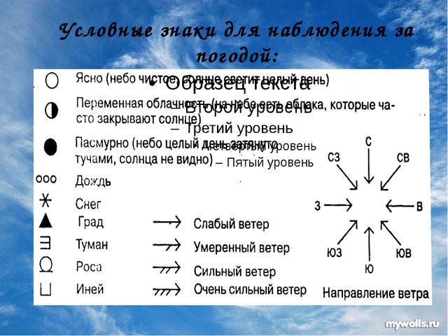 Условные знаки для наблюдения за погодой: