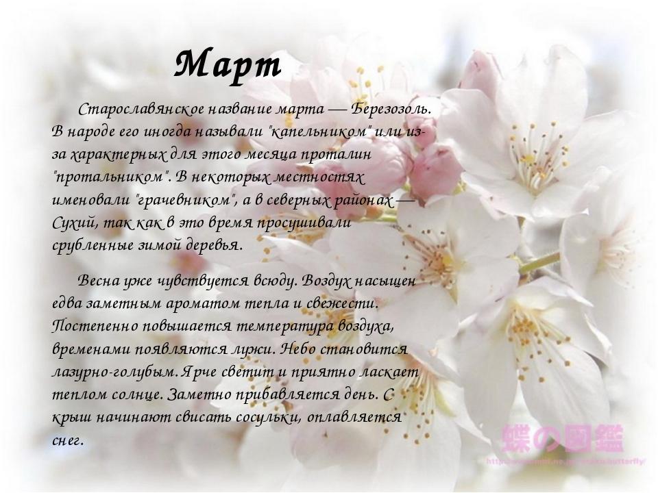 Март Старославянское название марта — Березозоль. В народе его иногда называл...