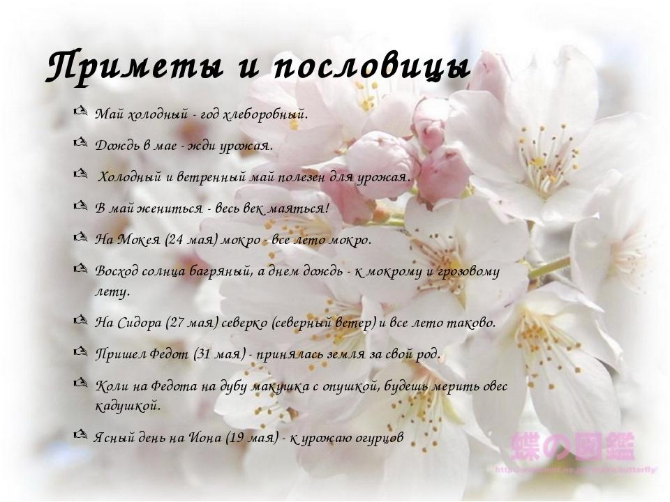 Приметы и пословицы Май холодный - год хлеборобный. Дождь в мае - жди урожая....