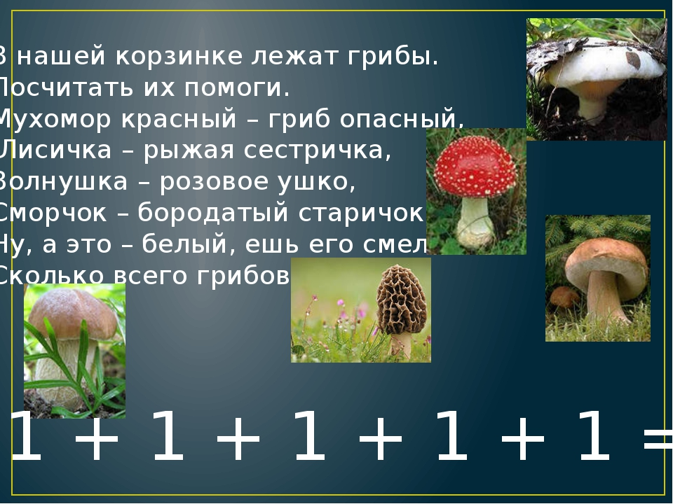 В нашей корзинке лежат грибы. Посчитать их помоги. Мухомор красный – гриб опа...